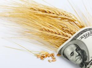 Как заработать на пшенице в бинарных опционах